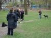 2012-04-15_hundetraining_033