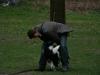 2012-04-15_hundetraining_037