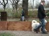 2012-04-15_hundetraining_073