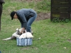 2012-04-15_hundetraining_084