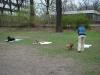 2012-04-15_hundetraining_108