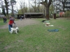 2012-04-15_hundetraining_128