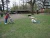 2012-04-15_hundetraining_129