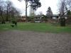 2012-04-15_hundetraining_159