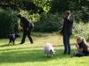 2012-09-16_hundetraining_41