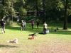 2012-09-16_hundetraining_49