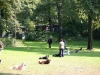 2012-09-16_hundetraining_50