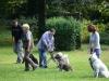 2012-09-16_hundetraining_54
