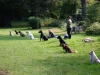 2012-09-16_hundetraining_56