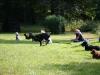 2012-09-16_hundetraining_57
