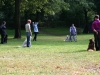 2012-09-16_hundetraining_67