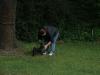 2012-06-17_hundetraining_002