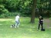2012-06-17_hundetraining_023