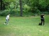 2012-06-17_hundetraining_025