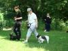 2012-06-17_hundetraining_031