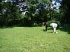 2012-06-17_hundetraining_034