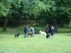 2012-06-17_hundetraining_044