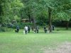 2012-06-17_hundetraining_047