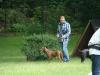 2012-06-17_hundetraining_058