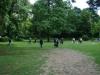 2012-06-17_hundetraining_071