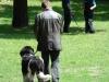 2012-06-17_hundetraining_076