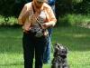 2012-06-17_hundetraining_077