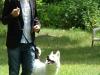 2012-06-17_hundetraining_081