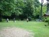 2012-06-17_hundetraining_088