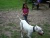 2012-06-17_hundetraining_127