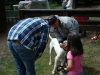 2012-06-17_hundetraining_128