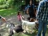 2012-06-17_hundetraining_129