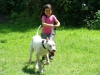 2012-06-17_hundetraining_130