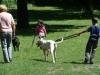 2012-06-17_hundetraining_137