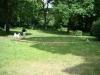 2012-06-17_hundetraining_145
