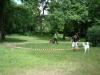 2012-06-17_hundetraining_147