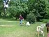 2012-06-17_hundetraining_149