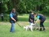 2012-06-17_hundetraining_157