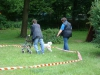 2012-06-17_hundetraining_160