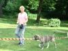 2012-06-17_hundetraining_164
