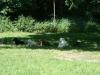 2012-06-17_hundetraining_179