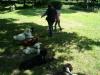 2012-06-17_hundetraining_186