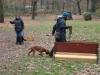 2012-11-18_hundetraining_12