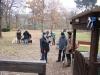 2012-11-18_hundetraining_28
