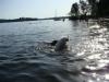 2012-08-19_badespass_heerstr_054