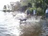 2012-08-19_badespass_heerstr_066