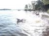 2012-08-19_badespass_heerstr_067