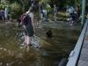 2012-08-19_badespass_heerstr_074