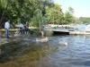2012-08-19_badespass_heerstr_127