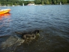 2012-08-19_badespass_heerstr_143