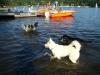 2012-08-19_badespass_heerstr_144